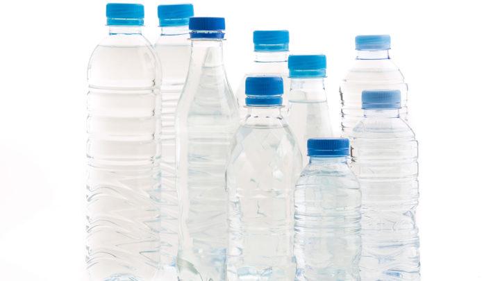 Sus au plastique