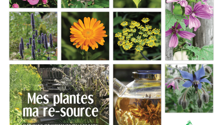 Livret mes plantes, ma re-source